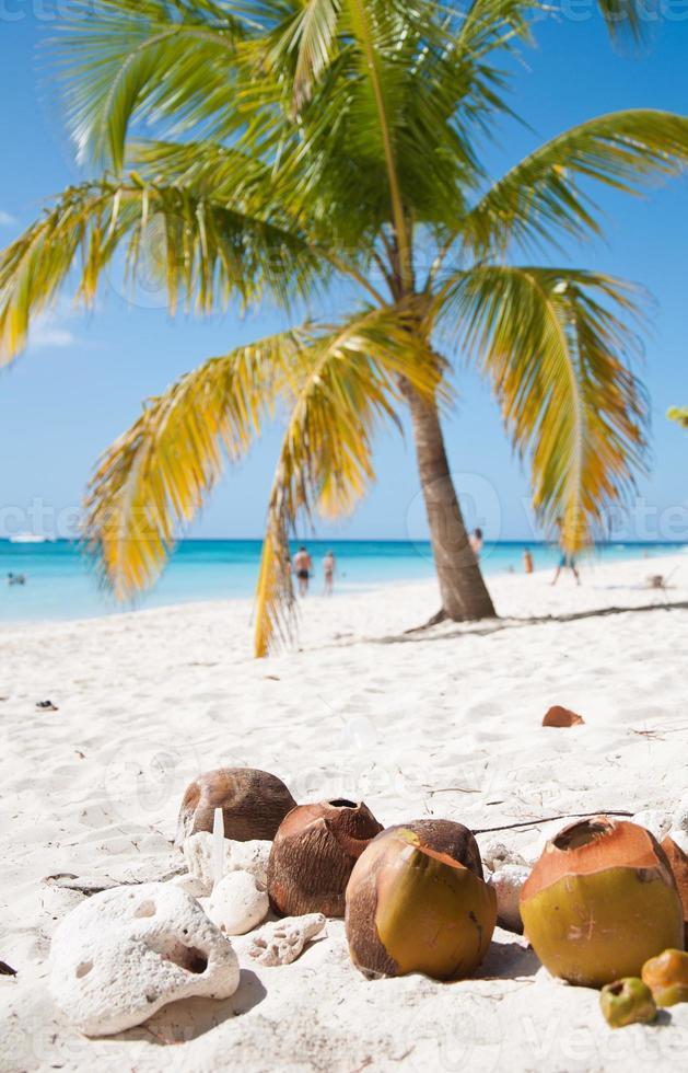 mar do caribe e praia foto