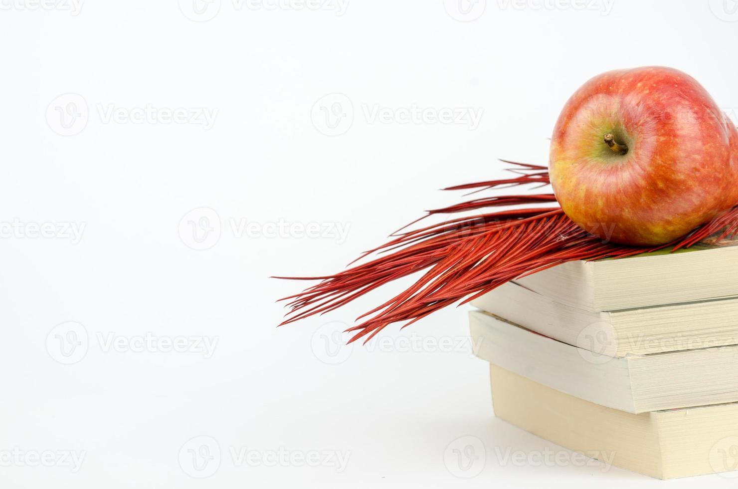 maçã em pé sobre um livro foto