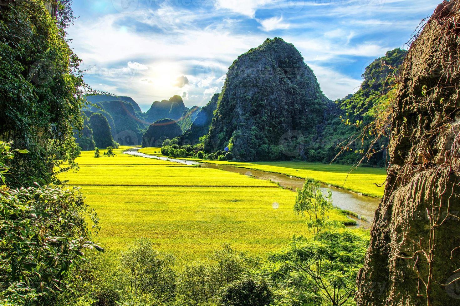 paraíso natural patrimônio mundial da unesco foto