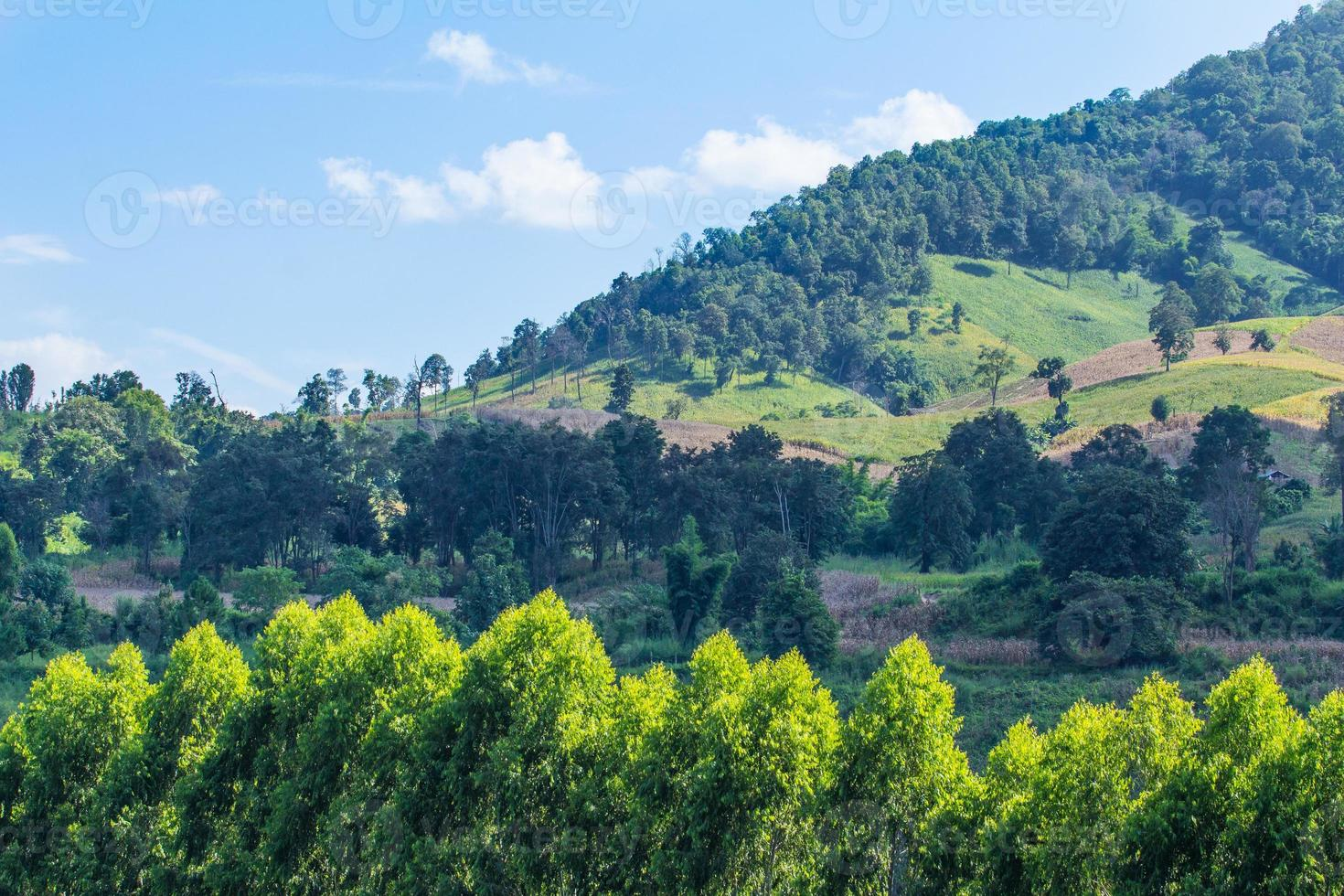 paisagem nas montanhas e o céu azul escuro com nuvens foto