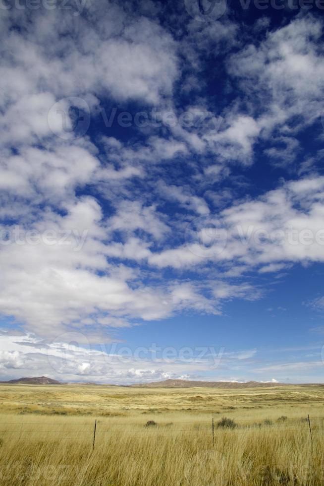 pastagens do oeste selvagem (nós) foto