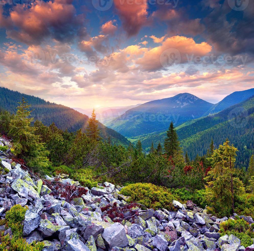 colorido nascer do sol de verão nas montanhas dos Cárpatos foto