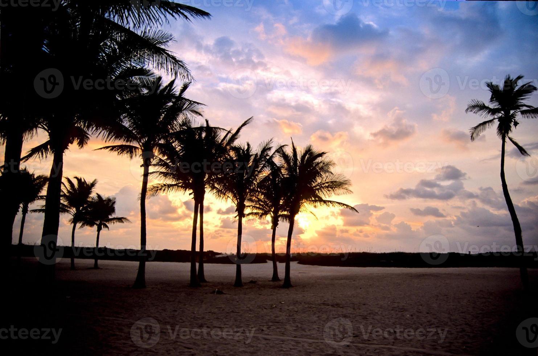 praia tropical florida foto