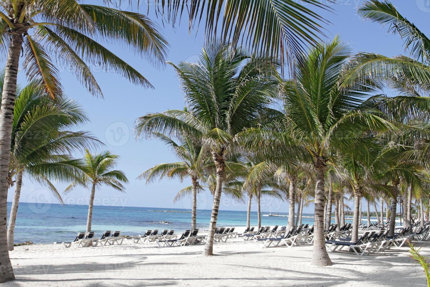 praia riviera maya méxico foto