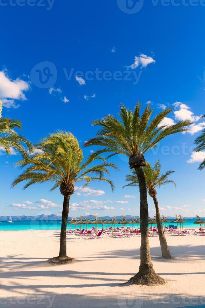 maiorca praia platja de alcudia em maiorca foto