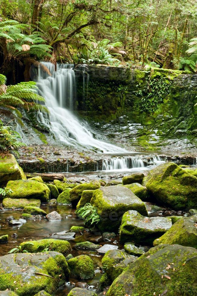 Horseshoe Falls, parque nacional mt field, tasmânia foto