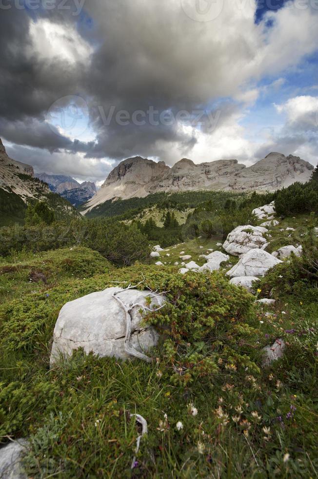 nas profundezas das montanhas foto