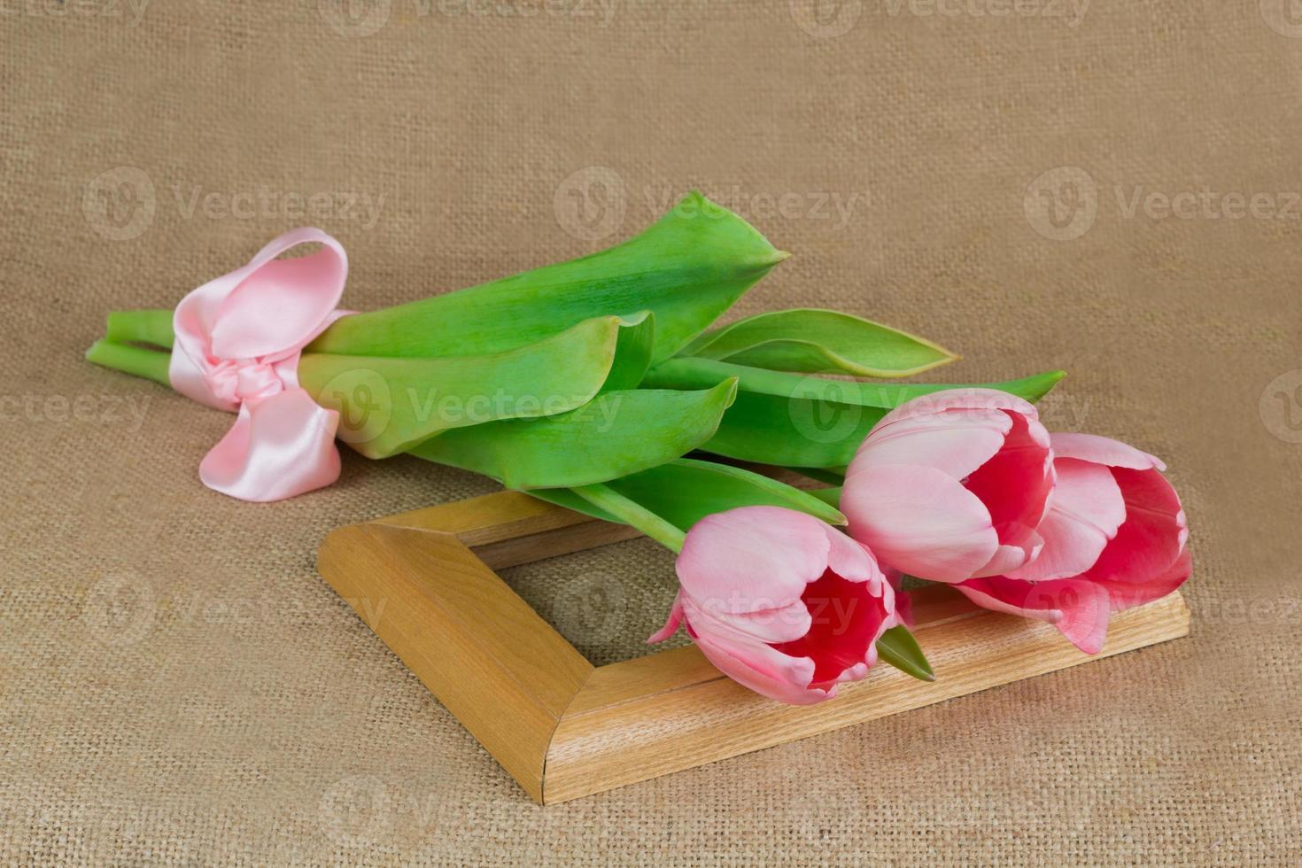 três tulipas rosa com fita de cetim na moldura foto