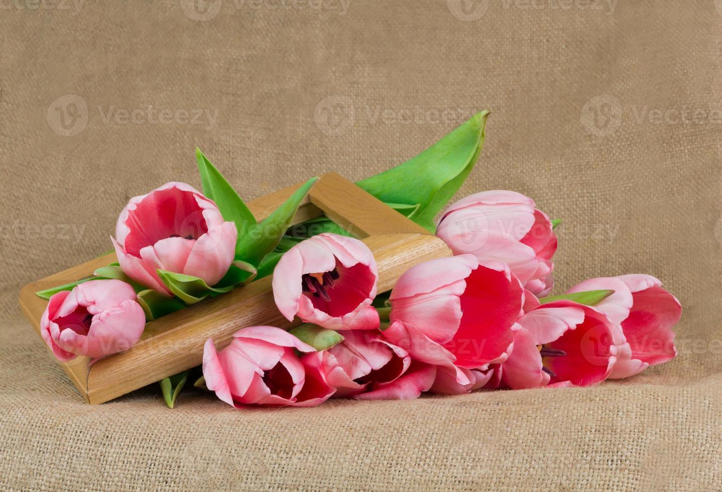 buquê de tulipas cor de rosa com fita de cetim e moldura de madeira foto