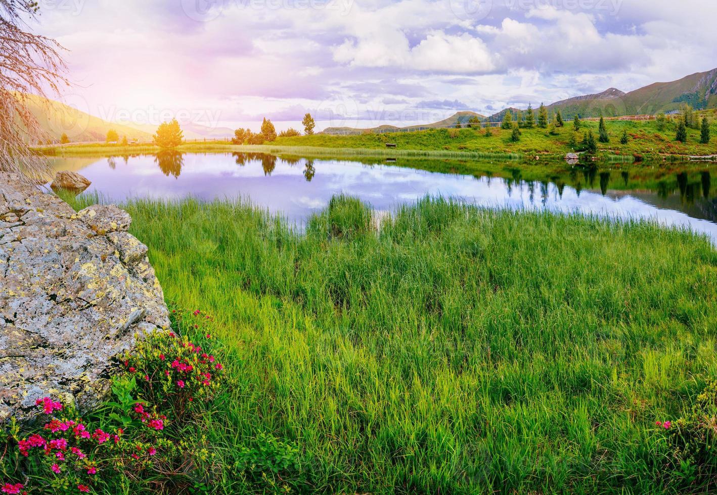clareira com flores perto da água nas montanhas foto