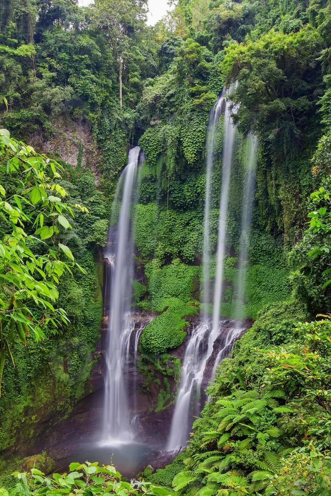 cachoeiras sekumpul em bali, indonésia foto