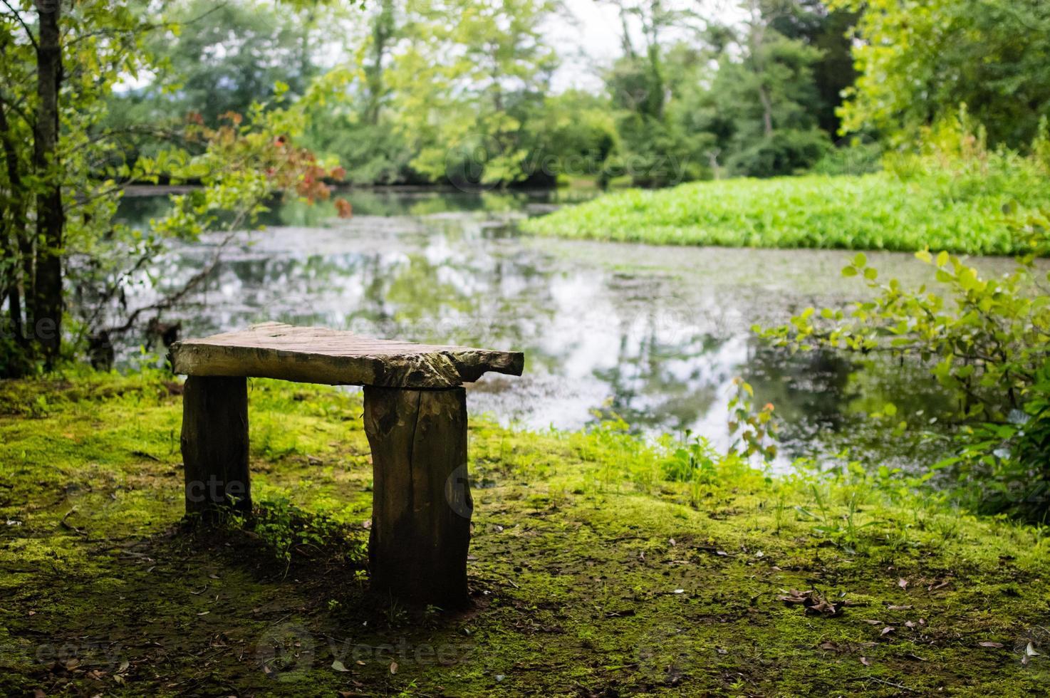 banco de madeira rústico com vista para o lago foto