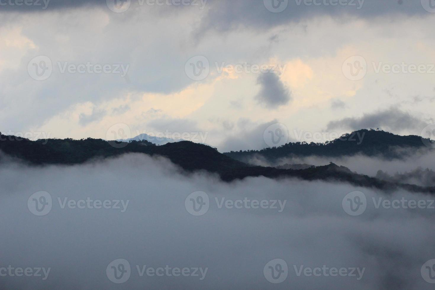 colinas de rajamala, parque nacional eravikulam, idukki | Kerala foto