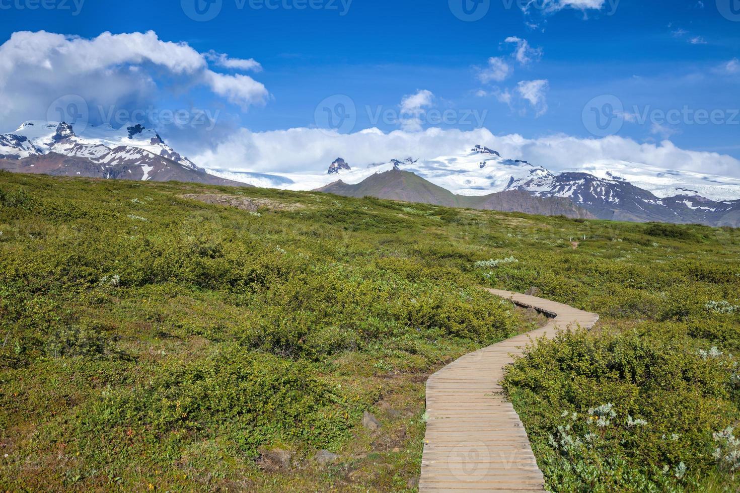 calçadão de madeira no parque nacional da Islândia foto