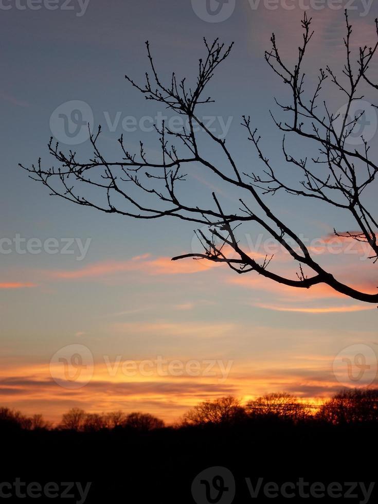 pôr do sol na área das dunas na Holanda foto