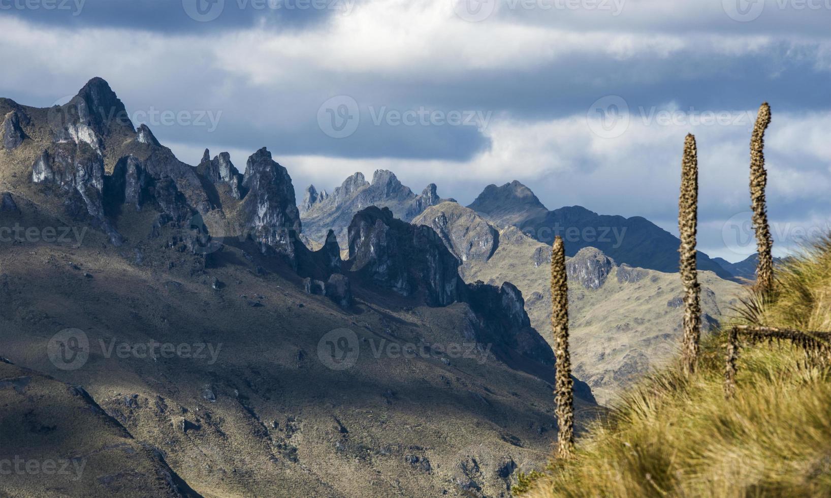 parque nacional cajas, planalto andino, equador foto