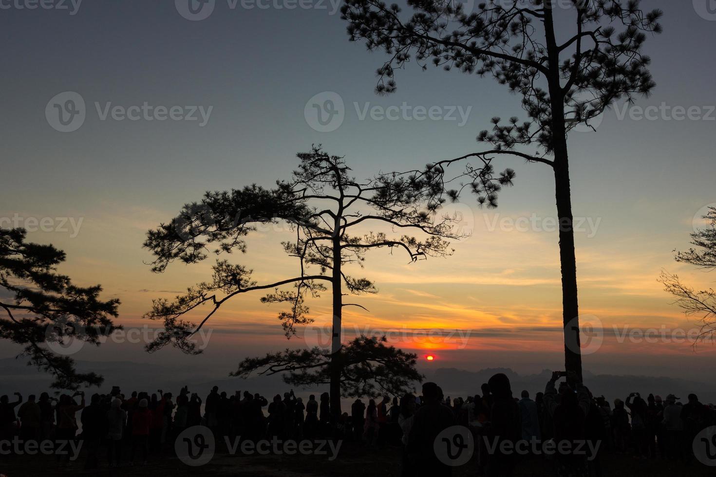 nascer do sol no parque nacional de phukradung, tailândia foto