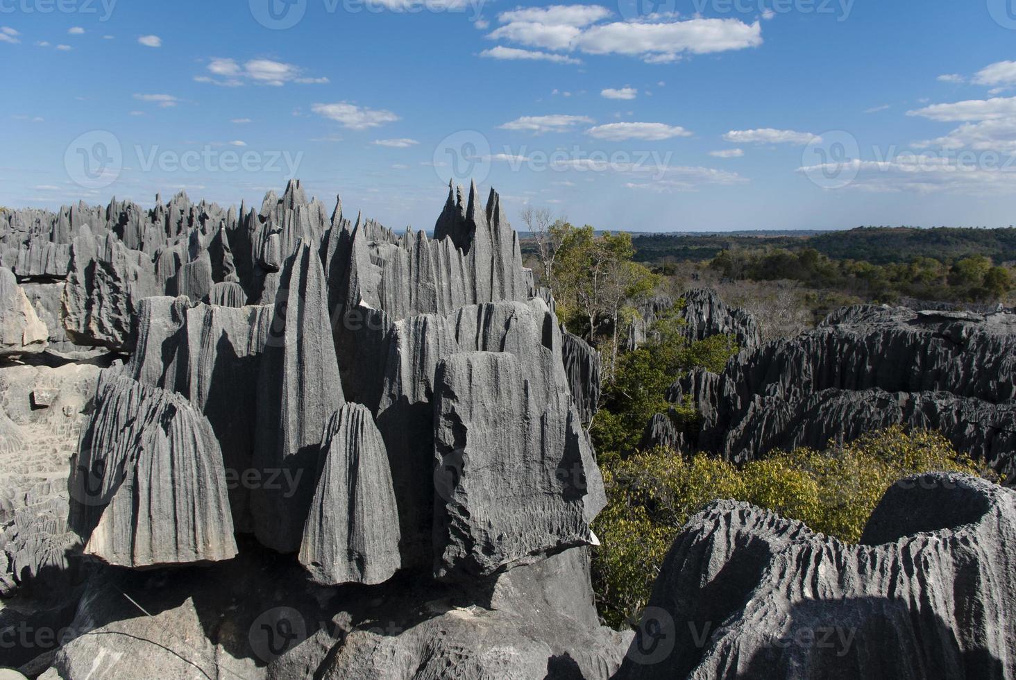 Tsingy de Bemaraha foto