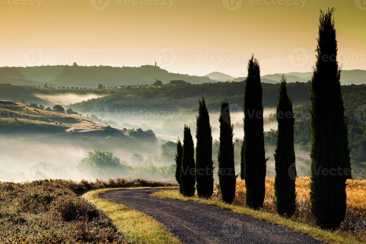 fardos da Toscana foto