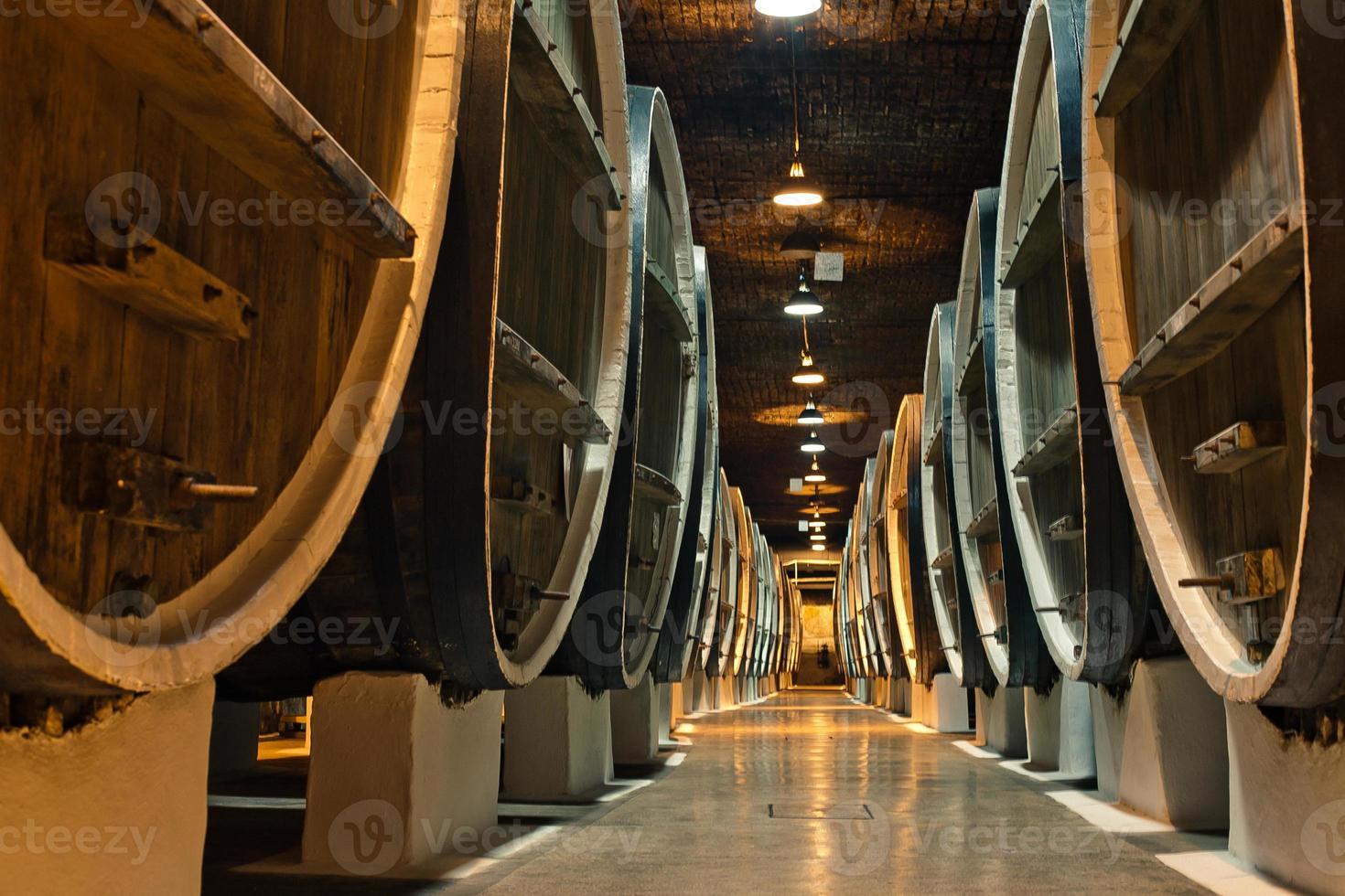 barris de vinho nas adegas de vinicultores foto