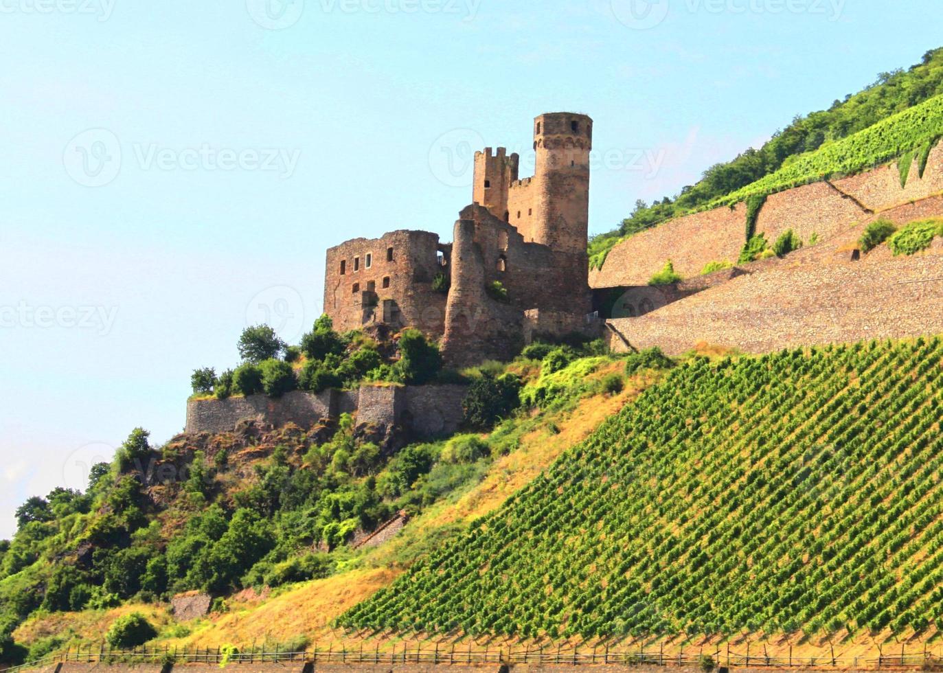 castelo no rhein foto