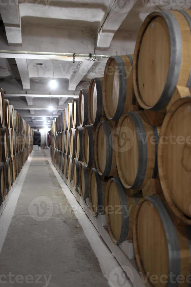 linha de barris de vinho foto