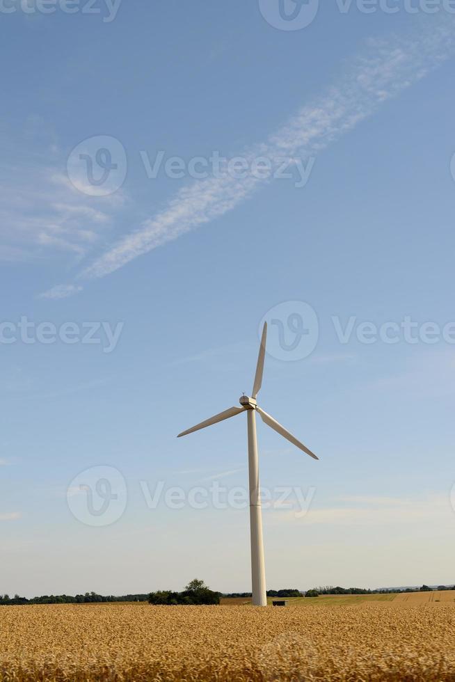 moinhos de vento, foto