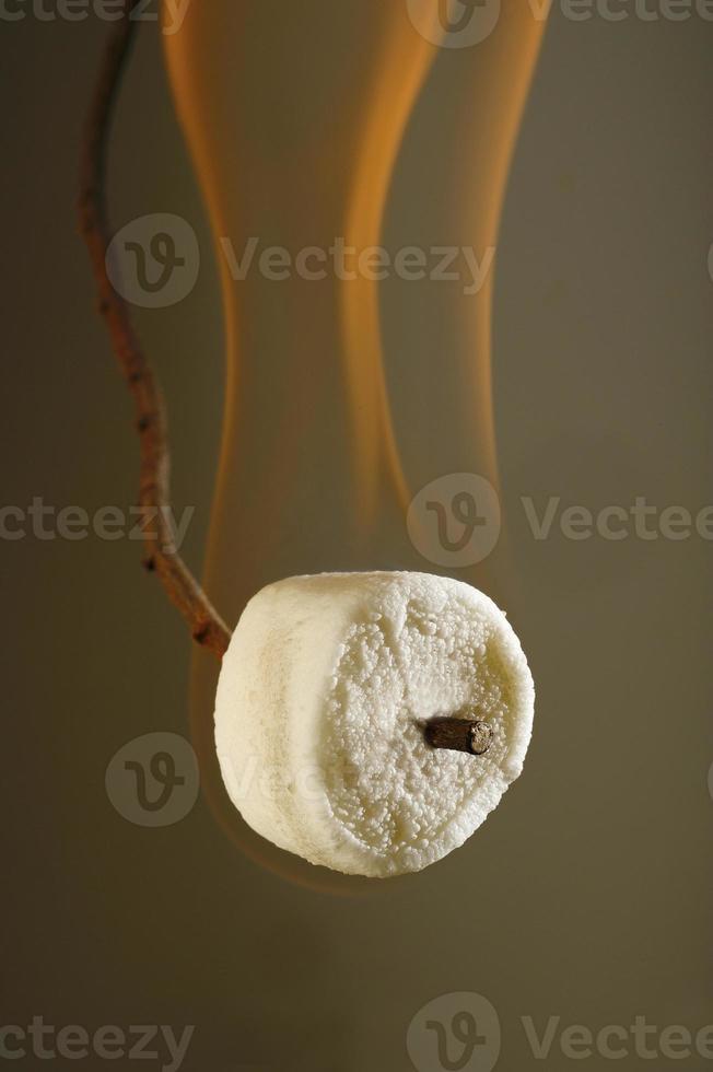 queimando marshmallow no palito foto
