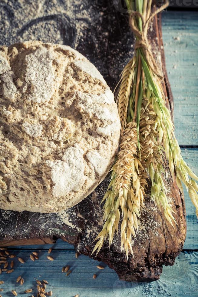 pão delicioso com grãos inteiros foto