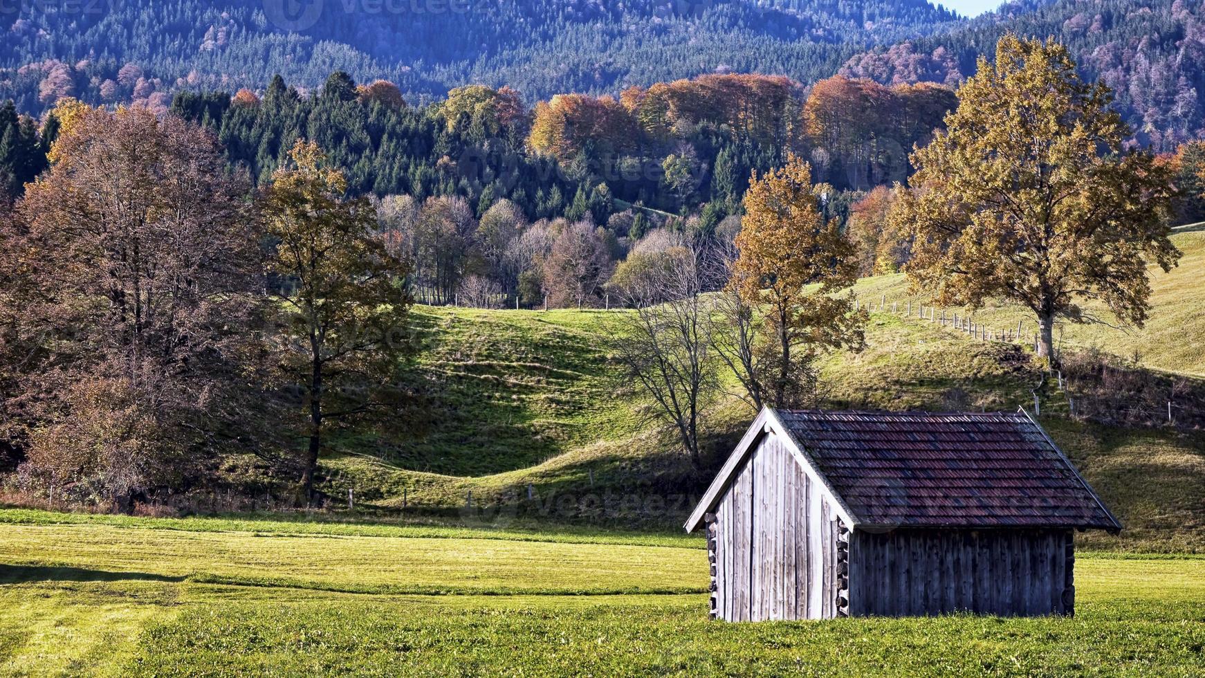 cabana de madeira foto