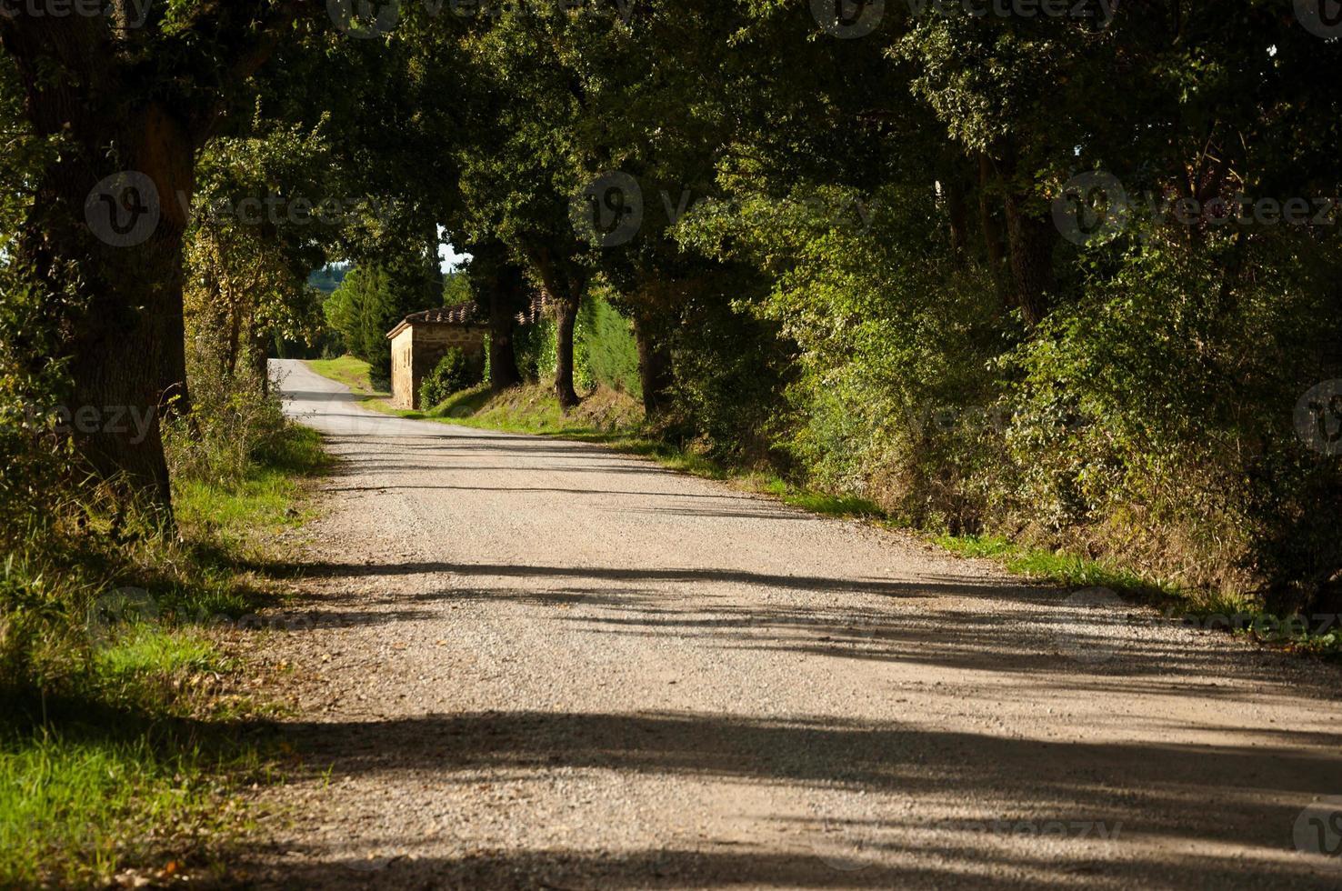 Toscana foto