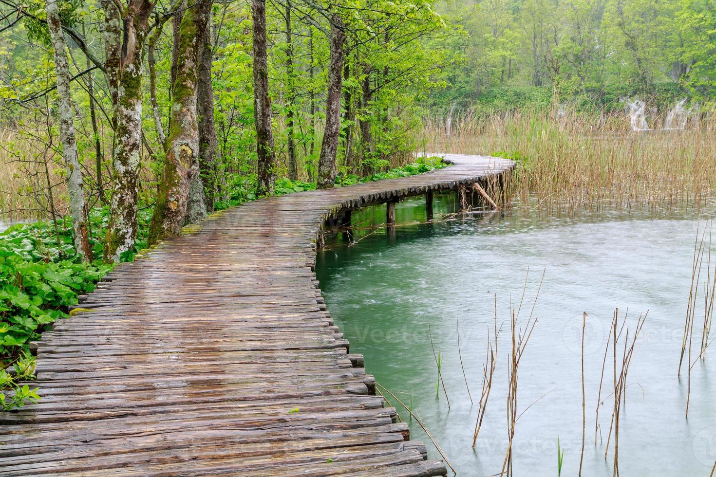 caminho de madeira no lago plitvice foto