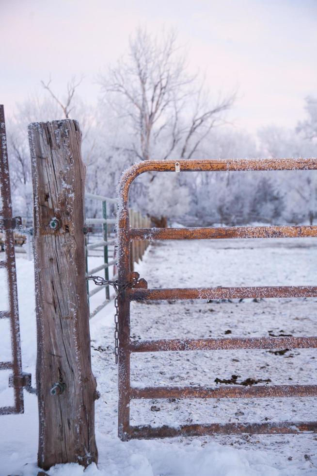 cerca de metal e madeira na neve foto