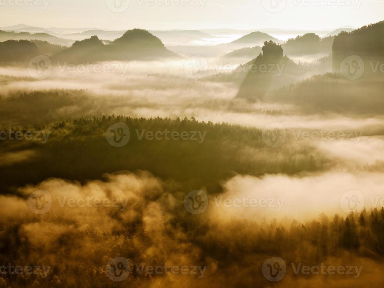 ravina rochosa cheia de névoa dourada e sol acima do horizonte. foto