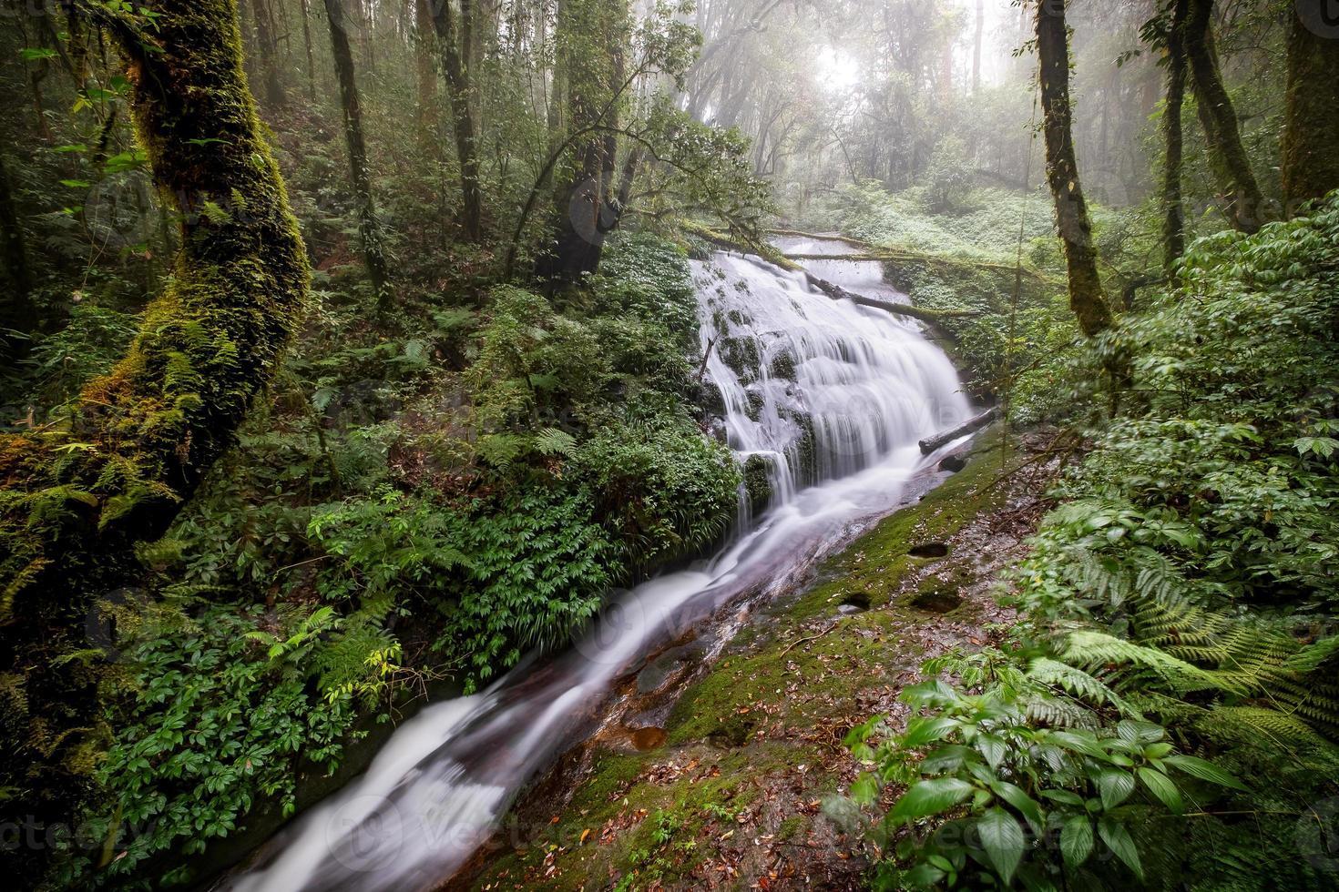 água fluindo em uma bela cachoeira foto