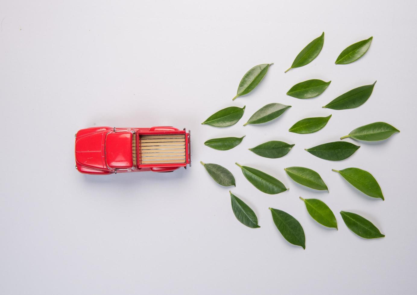 modelo do carro e folhas no fundo branco foto