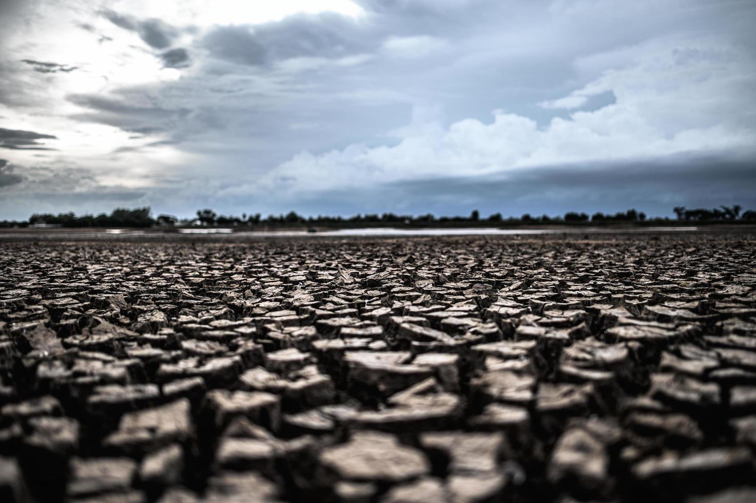 terra árida com solo seco e rachado foto