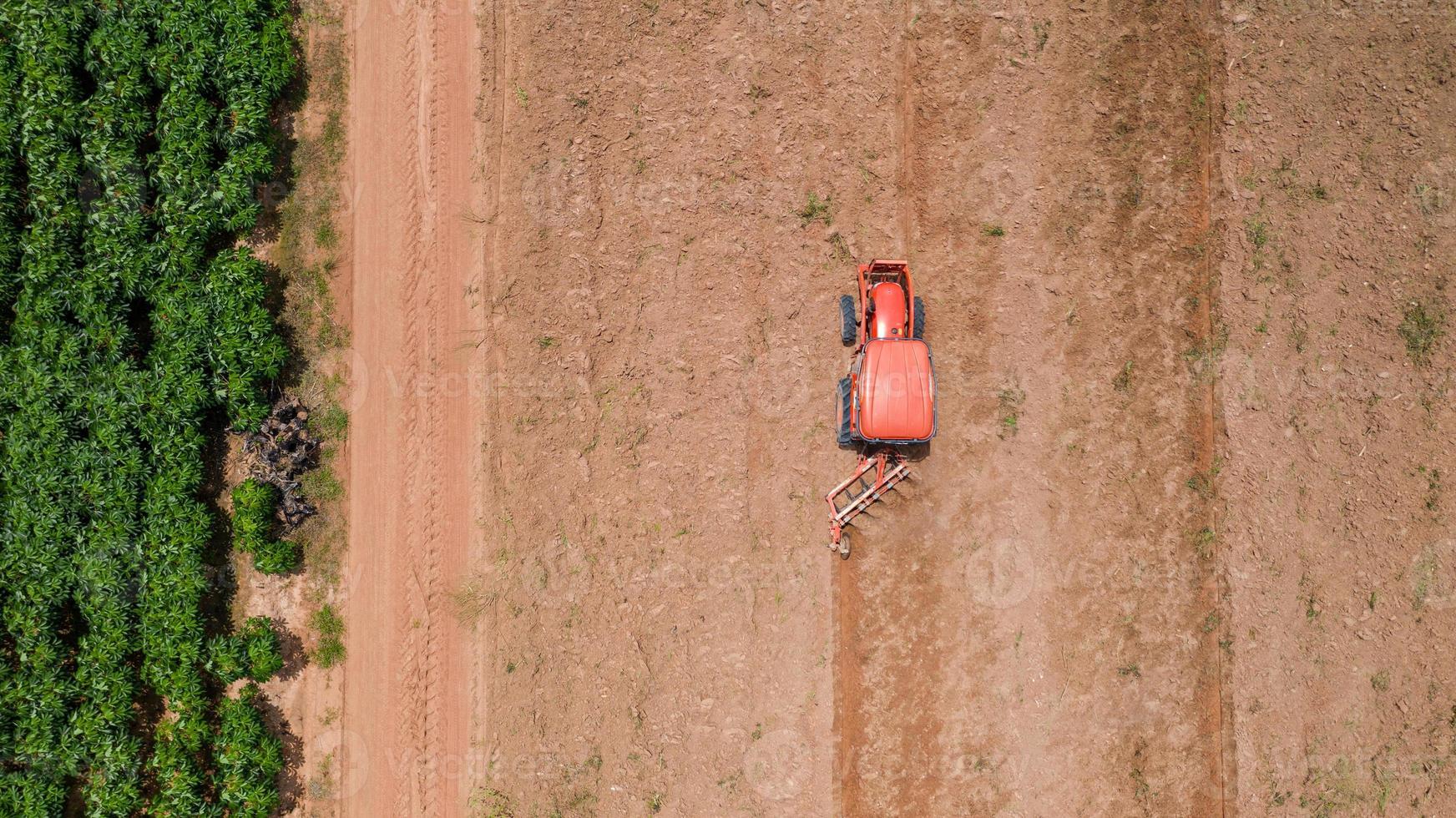 trator vermelho em um campo agrícola foto