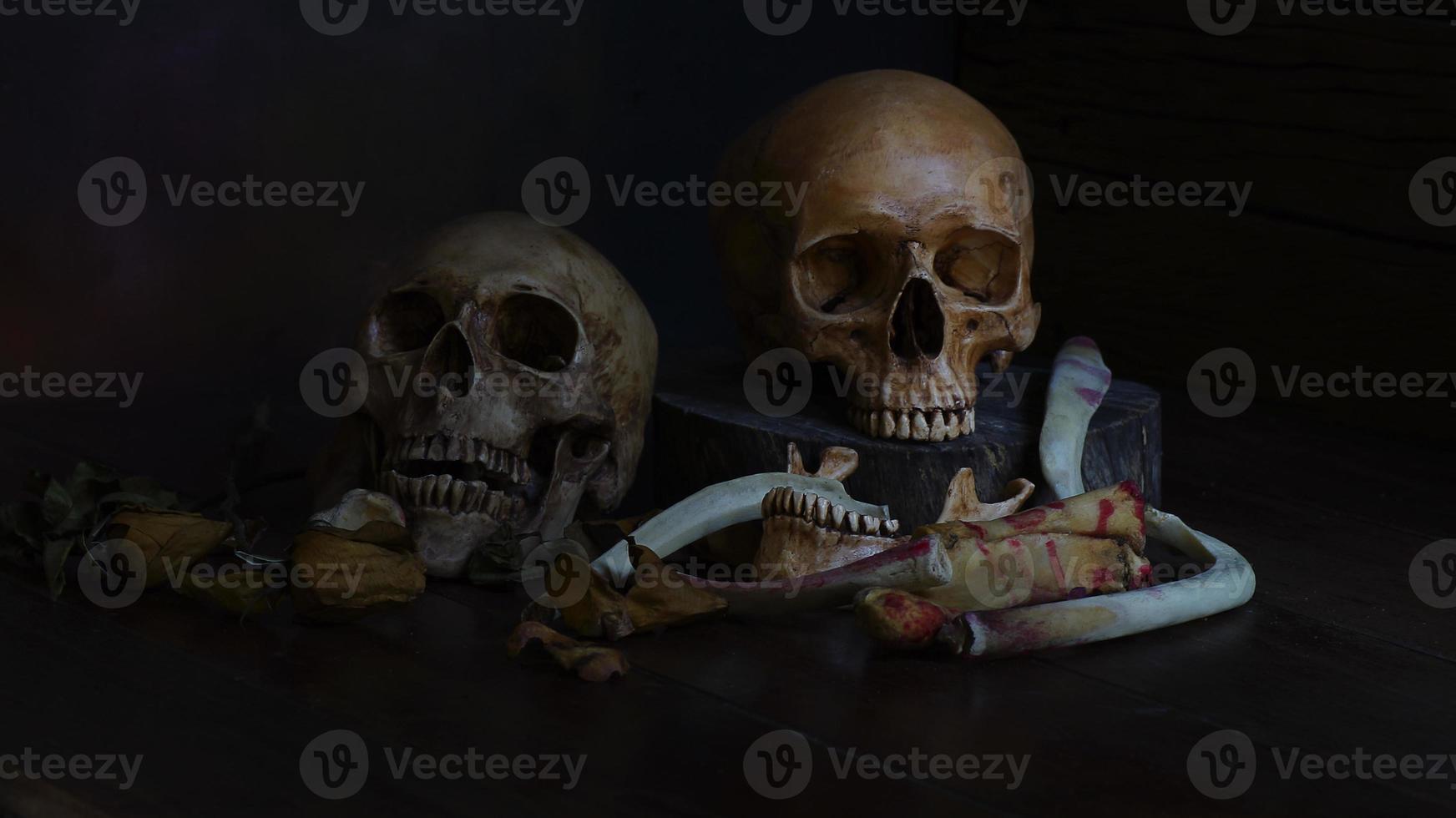 dois crânios humanos no fundo preto foto