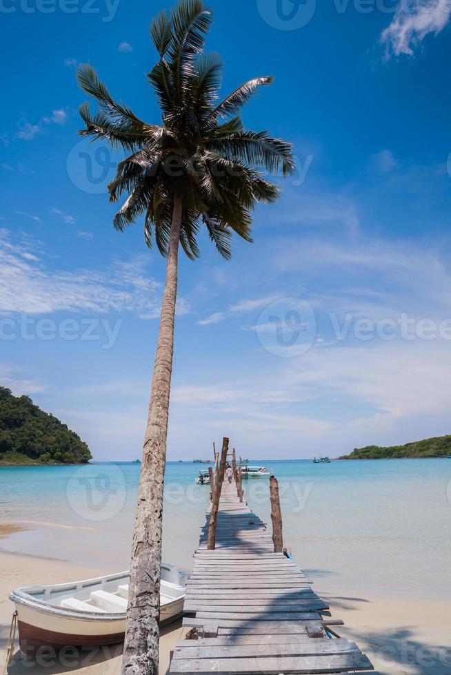 ponte de madeira e palmeira com um barco foto