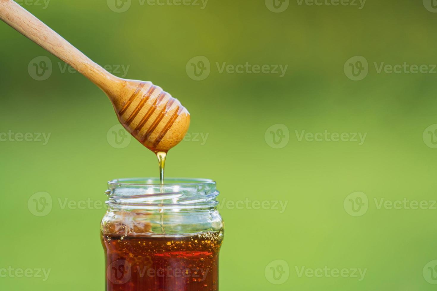 mel escorrendo da concha de mel em fundo verde natural foto