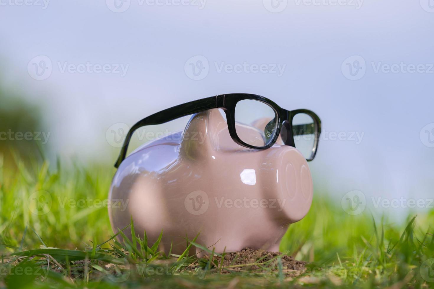 cofrinho rosa com óculos na grama sob o céu azul foto