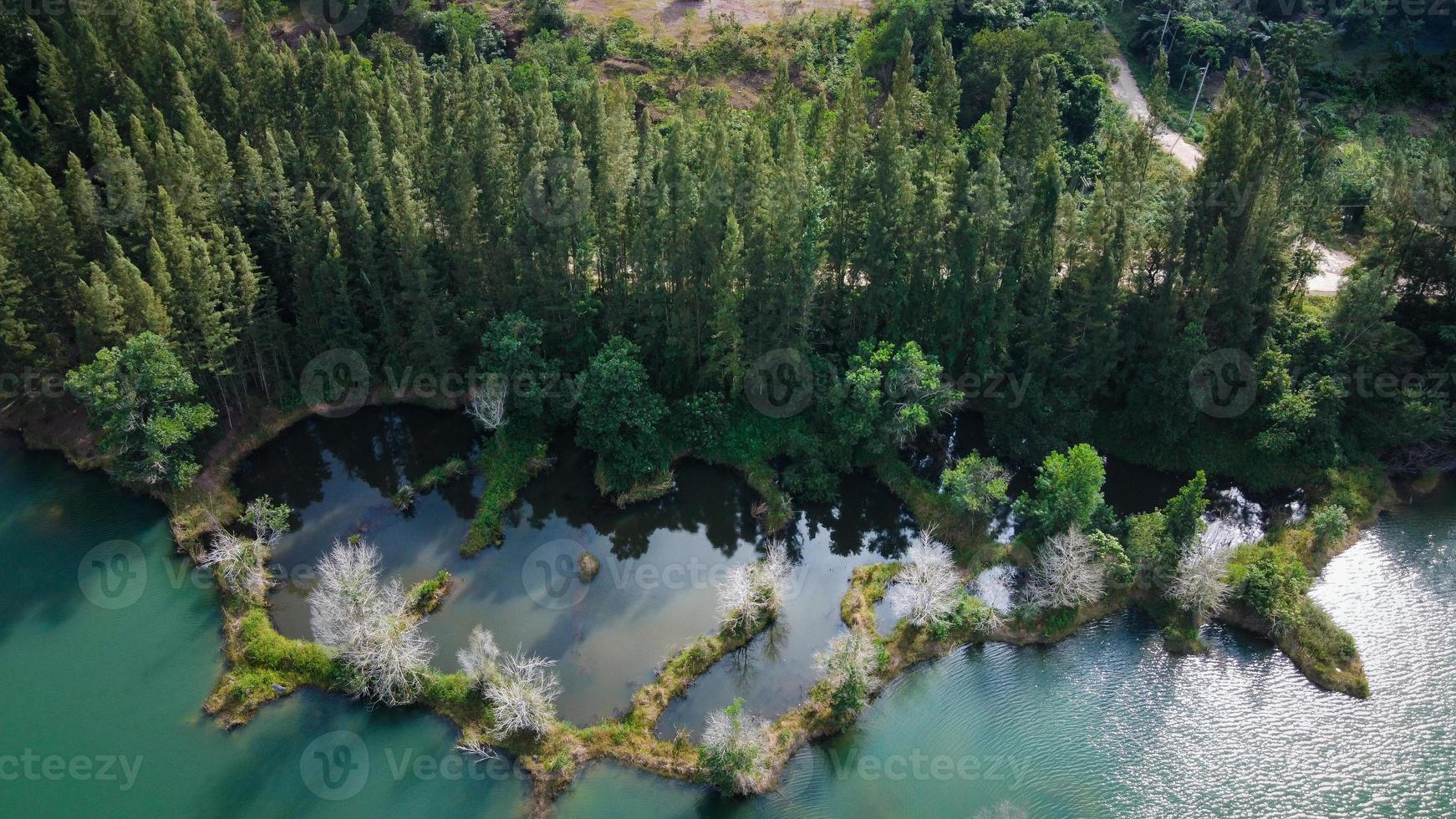 vista aérea do lago e da floresta de pinheiros no parque público de liwong, chana, Tailândia foto