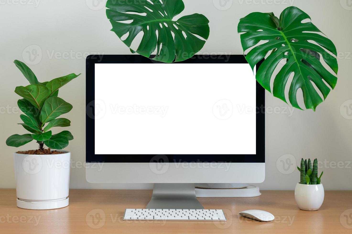 visualização da área de trabalho com teclado e plantas foto