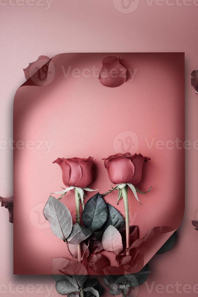rosas para o dia dos namorados em um fundo de rolo de papel foto