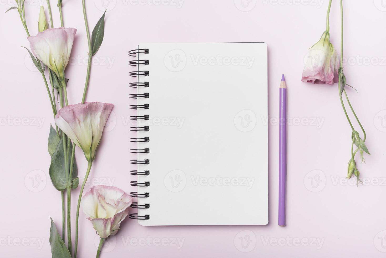 flores eustoma e caderno espiral em branco com lápis roxo em fundo rosa foto
