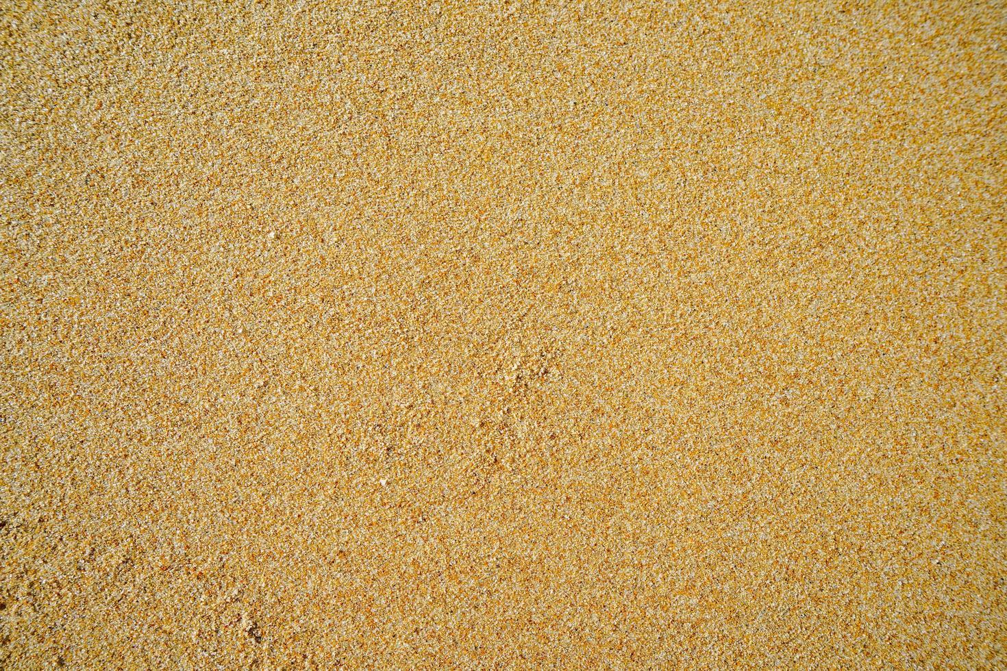 fundo natural com areia amarela foto