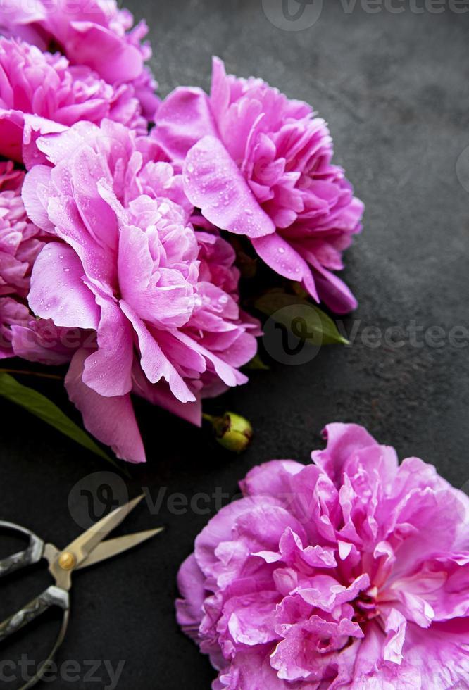 borda de flores peônia em um fundo preto foto