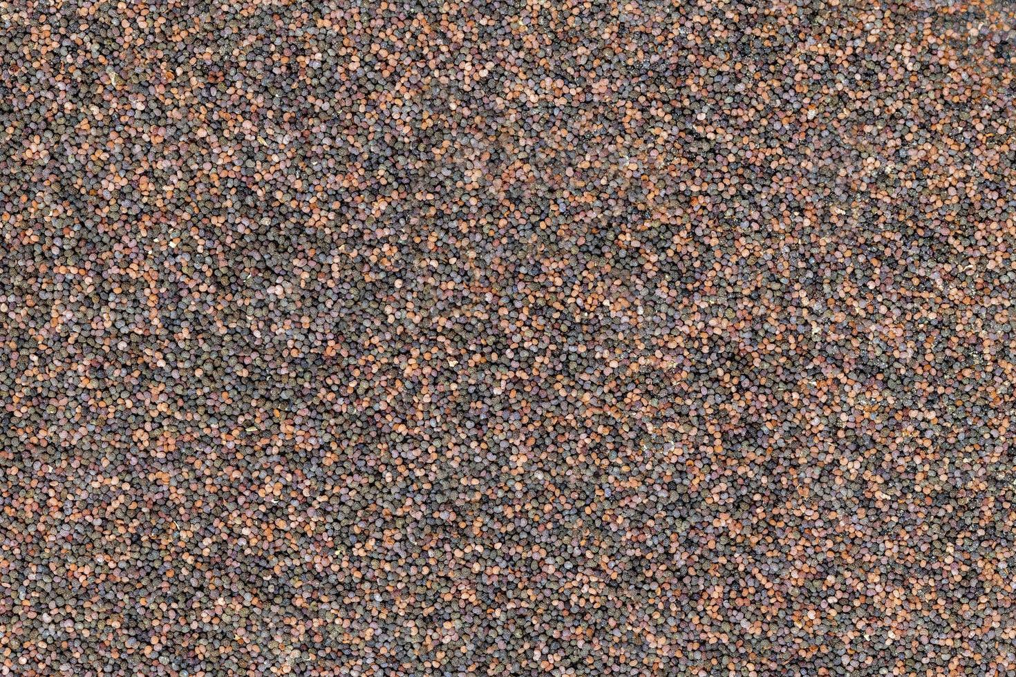 fundo de sementes de papoula distribuídas uniformemente em cores diferentes foto