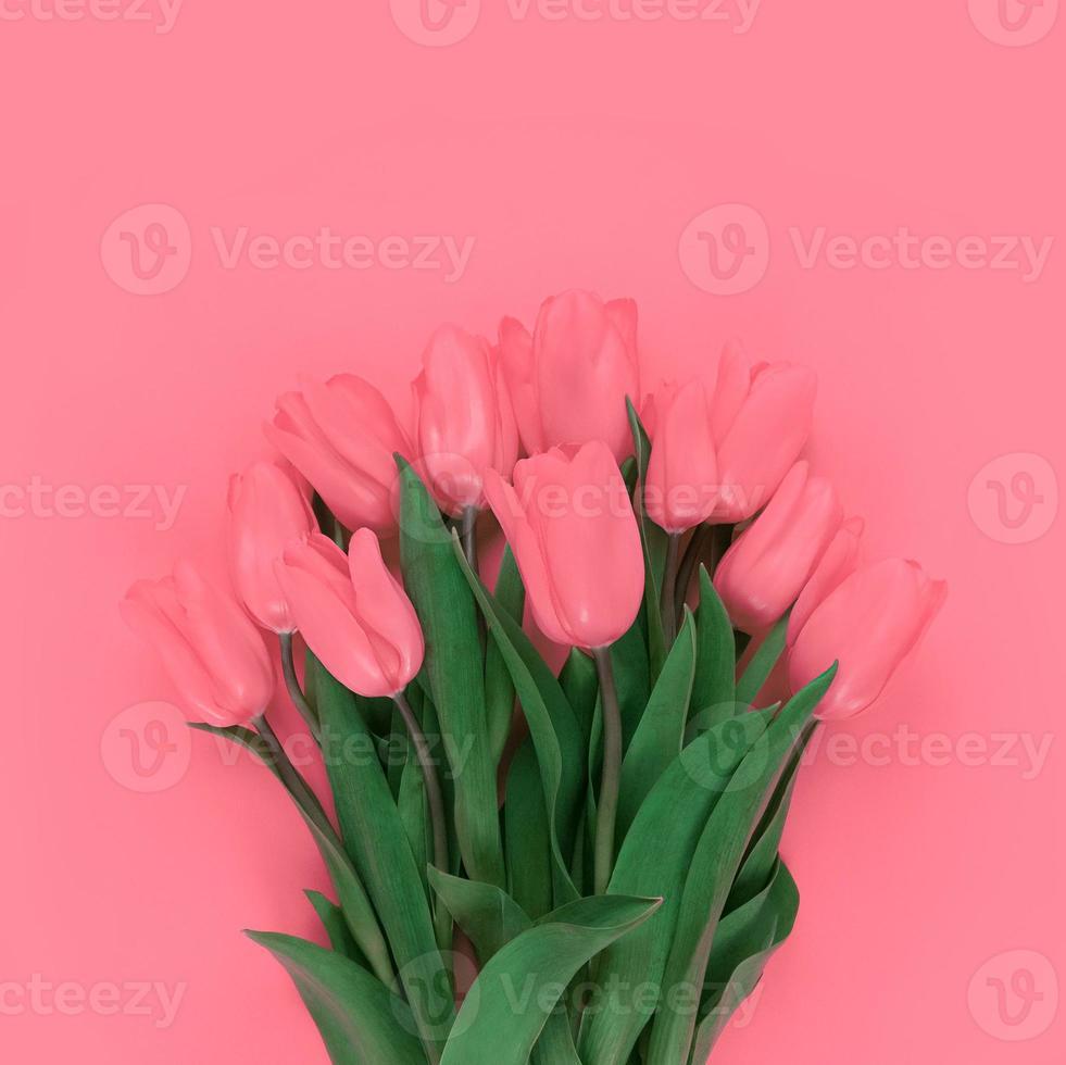 buquê de tulipas em fundo rosa suave foto